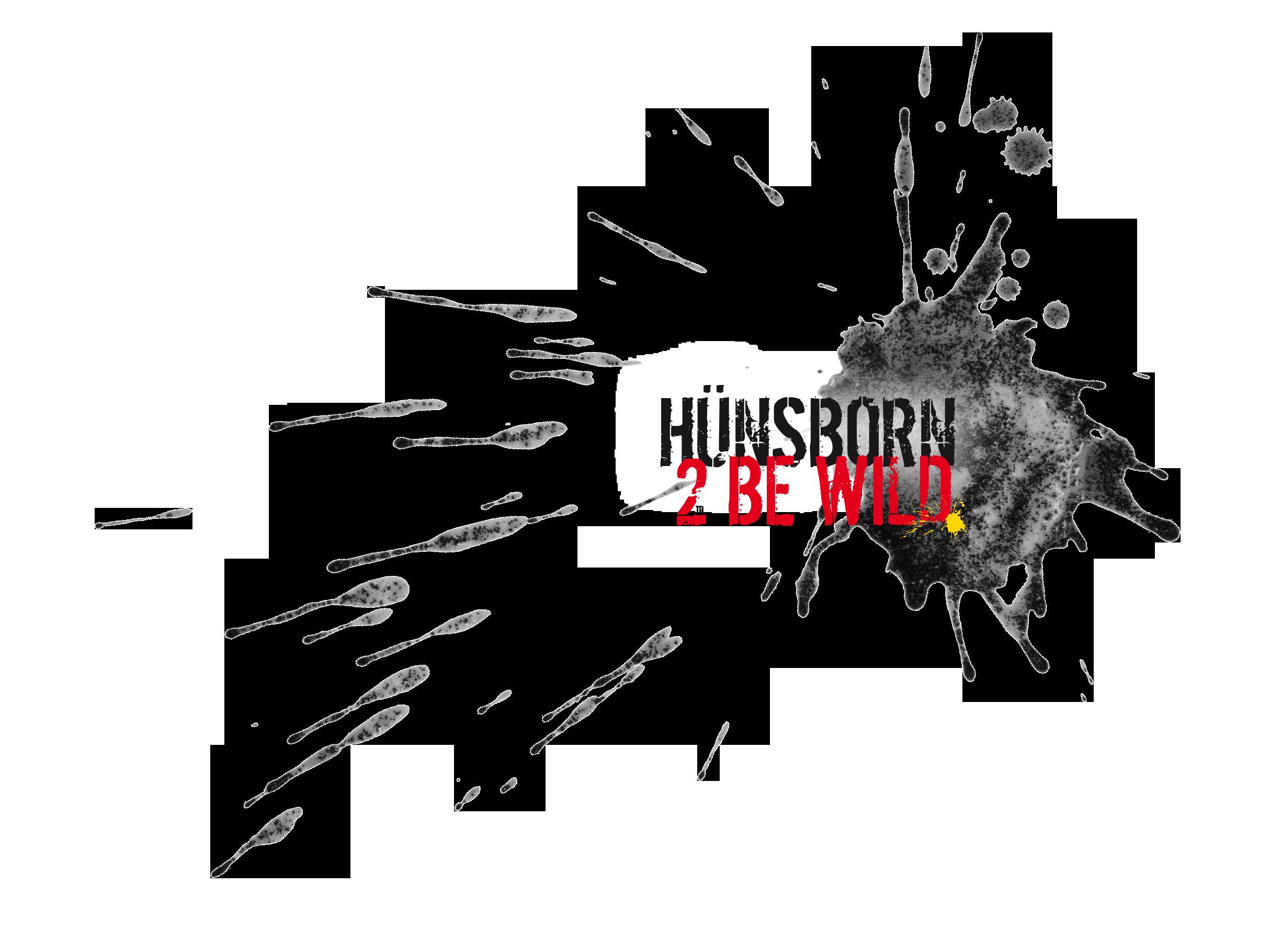 huensborn logo